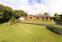 Bungalow in Inn Lane, Hartlebury...