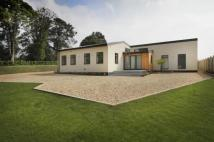Bungalow for sale in Church Lane, Stone...