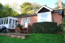 3 bed Detached Bungalow to rent in Wells Road, Malvern Wells