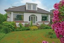 Detached Bungalow in 1 Raeside Avenue...