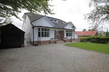 2 South Road Detached Bungalow for sale