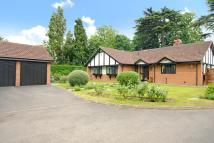 3 bedroom Detached house in Beckenham Place Park...