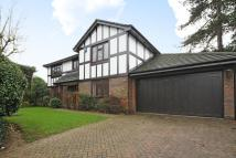 Detached home for sale in Sundridge Avenue, Bromley