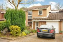 Detached property in Onslow Crescent...