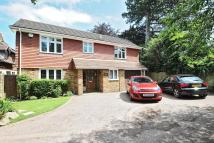4 bed Detached house for sale in Prince Imperial Road...