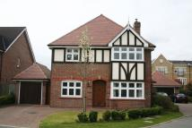 Detached house in Wagtail Walk...