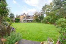 6 bedroom semi detached home for sale in Croxted Road, Dulwich...