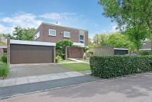 Detached house for sale in Tollgate Drive, Dulwich