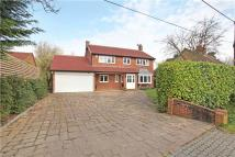 4 bedroom Detached house in Hogmoor Lane, Hurst...