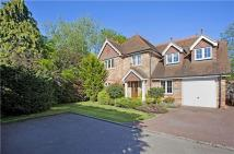 5 bedroom Detached property in Rosevale Drive, Hurst...