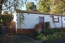 2 bed semi detached home to rent in Loaninghill Road, Uphall...