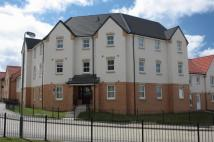 2 bed Flat to rent in Russell Place, Bathgate...