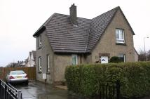 The Avenue semi detached property to rent