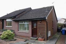1 bedroom semi detached home to rent in Tippet Knowes Park...
