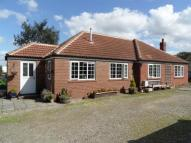 Detached Bungalow in Wighill Lane, Tadcaster...