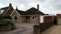 Bungalow to rent in FAKENHAM
