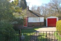 3 bed Bungalow to rent in INGOLDISTHORPE