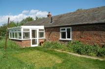 3 bedroom Bungalow in TERRINGTON ST CLEMENTS