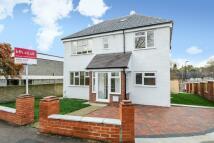 11 bedroom Detached house for sale in Wells Park Road, Sydenham