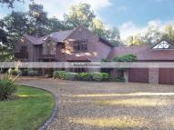 property in Branksome Park -...