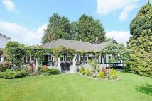 Trent Gardens Bungalow for sale