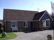 Detached Bungalow for sale in Springfield Close...