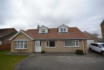 South Street Detached Bungalow for sale