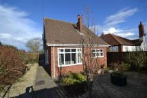 2 bed Detached Bungalow for sale in Cliff Road, Hornsea...
