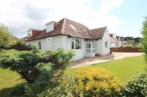 Detached house for sale in Albert Drive, Bearsden...