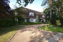 4 bed Detached property in Forest Ridge Keston BR2