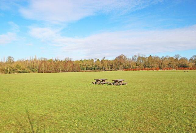 Trumpington local area