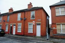 Handley Street End of Terrace property to rent