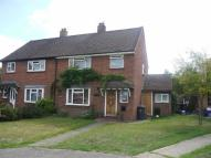 3 bedroom semi detached house to rent in Medlar Close...