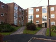 Apartment to rent in Leicester Close...