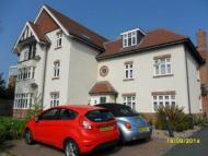Rectory Road Apartment to rent