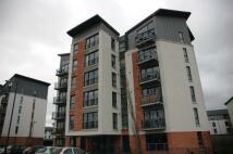 Haughview Terrace Flat for sale