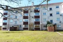 Apartment to rent in Falkland Place...