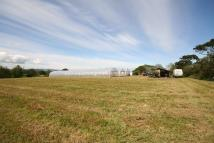 Plot for sale in Organic Smallholding /...