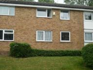 Flat to rent in SOUTH DARENTH
