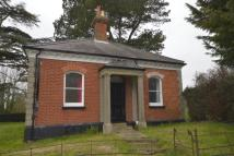 2 bed Detached Bungalow to rent in Canterbury Road...