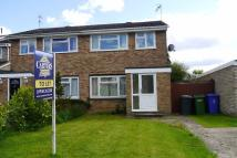 semi detached property to rent in Springfield Gardens...