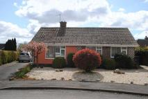 2 bedroom Detached Bungalow in Malkinson Close...