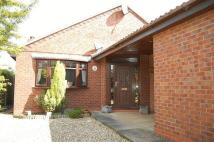 3 bed Detached Bungalow for sale in Westgate Road, Belton...