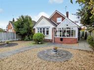 Detached Bungalow for sale in Billington Lane...