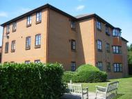 Hadlow Road Flat to rent