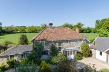 Detached home for sale in Hawkchurch, Devon, EX13