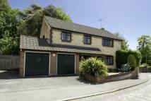 4 bedroom Detached house in Portesham, Dorset, DT3