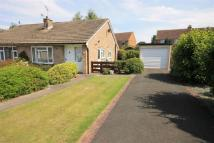 Semi-Detached Bungalow in Romanby