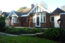Detached Bungalow to rent in Ribblesdale Road...