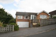 Detached Bungalow to rent in Beech Avenue, Mapperley...